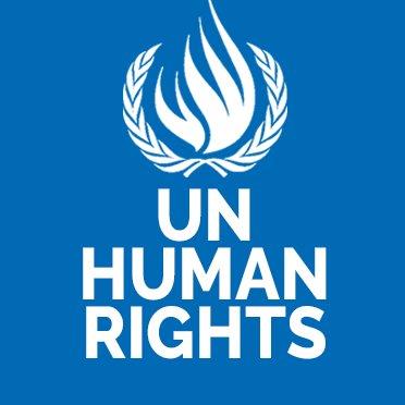 UN Human Rights experts